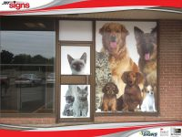 Bayridge_Animal_Hospital_window-800HF